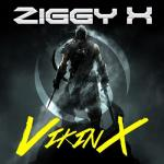 Cover: Ziggy X - VikinX