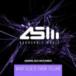 Cover: Aurosonic - What Else Is There To Love