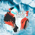Cover: Sedo - In Control
