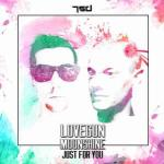 Cover: Lovegun & Moonshine - Just For You
