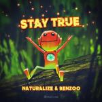 Cover: Naturalize - Not For Me