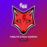 Cover: Firelite & Paul Gannon - Burn