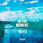 Cover: Teyo - Live In The Moment