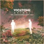 Cover: Vicetone feat. Jordan Powers & Bekah Novi - Animal
