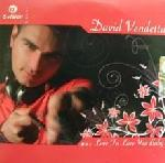Cover: David Vendetta - Love To Love You Baby