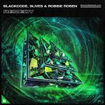 Cover: Blackcode & 9Lives feat. Robbie Rosen - Remedy