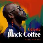 Cover: Black Coffee feat. Celeste - Ready For You