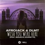 Cover: Afrojack & DLMT feat. Brandyn Burnette - Wish You Were Here
