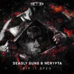 Cover: Deadly Guns - Rip It Open