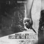 Cover: Rooler & Sefa - Survive The Street
