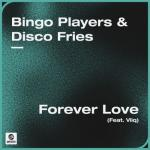 Cover: Bingo Players & Disco Fries feat. Viiq - Forever Love