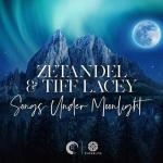 Cover: Zetandel & Tiff Lacey - Higher Ground