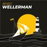Cover: Rayvolt - Wellerman