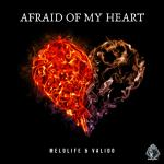 Cover: Melolife & Valido - Afraid Of My Heart