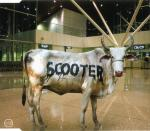 Cover: Scooter - Behind The Cow