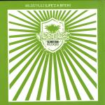 Cover: Wildstylez - Missin'