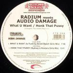 Cover: Radium Meets Audio Damage - What U Want (Is f**king Bondi Beach Girls Mix)