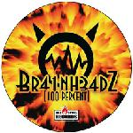 Cover: Brainheadz - 100 Percent