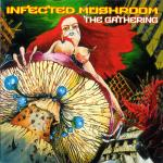 Cover: Infected Mushroom - Psycho