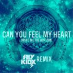 Cover:  - Can You Feel My Heart (Shy Kidx Remix)
